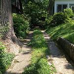 takoma park driveway thumb